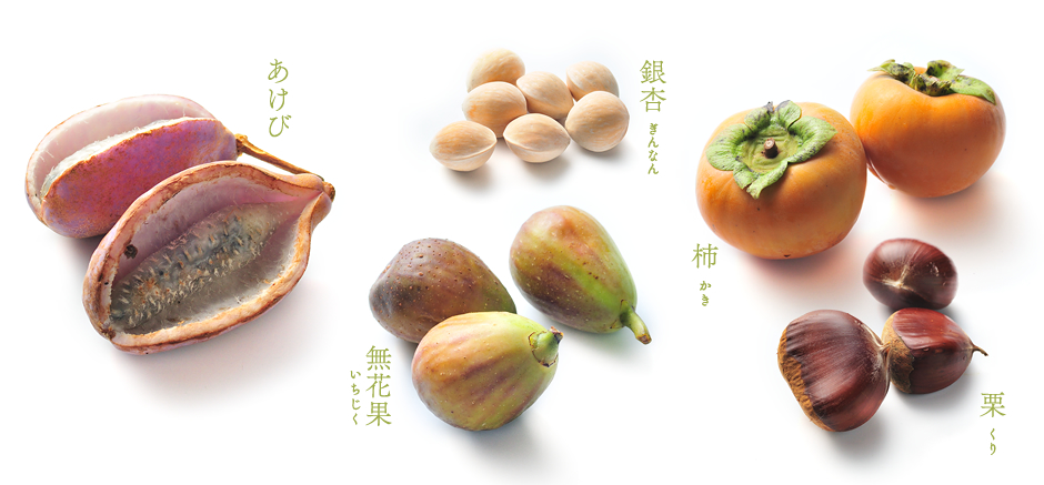 あけび 銀杏 無花果 柿 栗