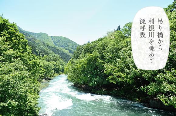 吊り橋から眺める利根川